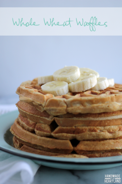 Waffles-made-with-Whole-Wheat