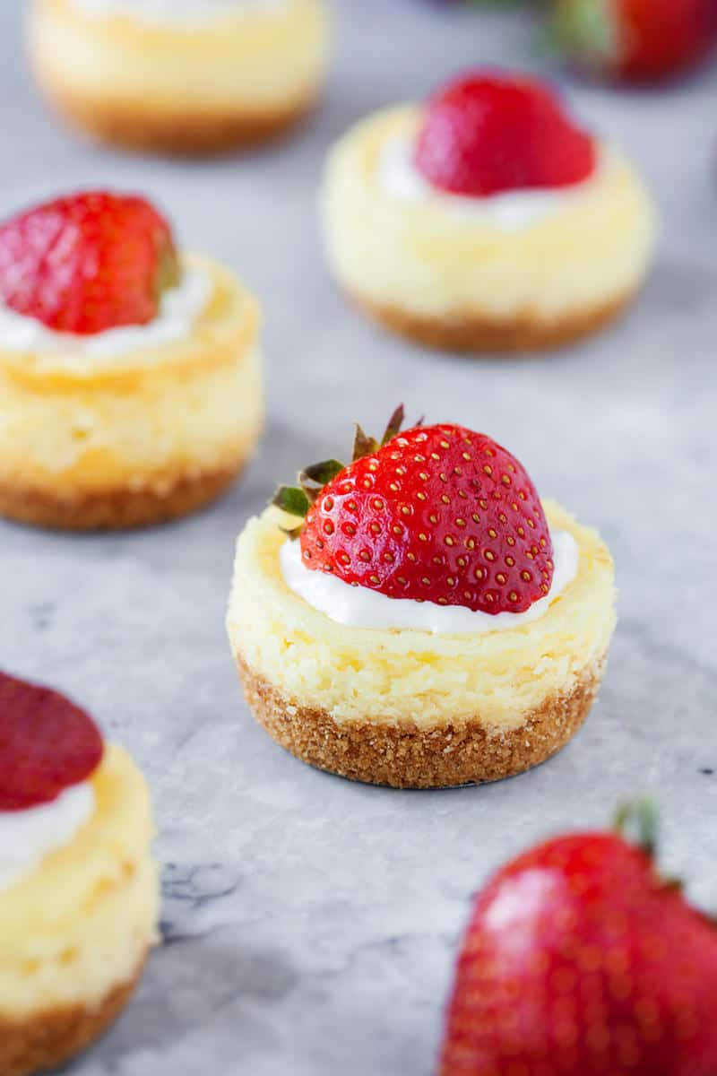 Want to make a small dessert that's going to be a hit? This mini cheesecake recipe is perfect - easy to make, and they won't last long!