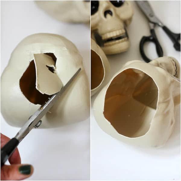 skullcollage1