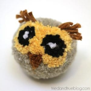 Follow the detailed instructions and pictures to make your own DIY owl Pom Pom! This is a perfect craft to make with kids!