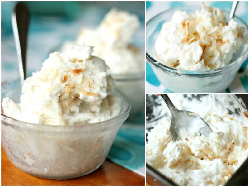 Three Ingredient Coconut Ice Cream Recipe