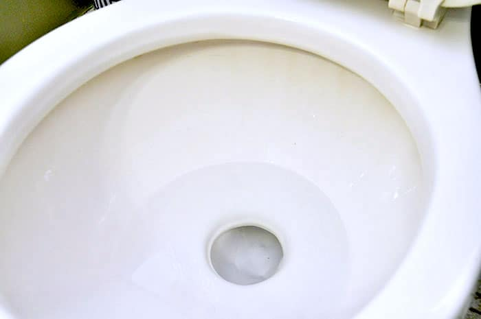 Homemade all purpose cleaner test on a toilet