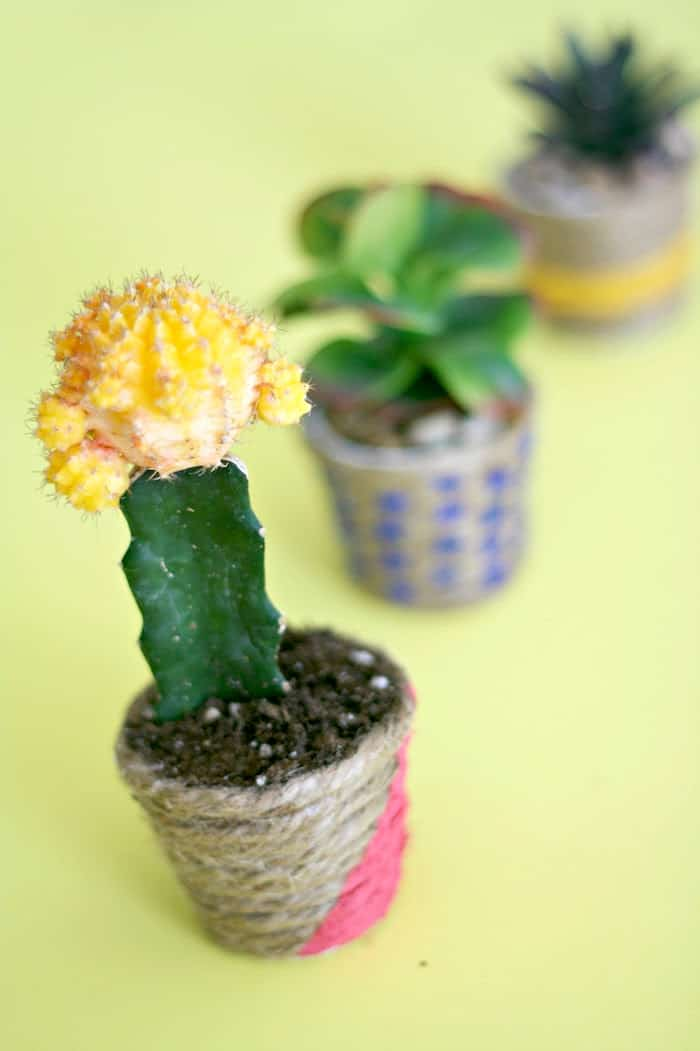 Diy Planters. Creative Diy Planter Projects With Diy ...