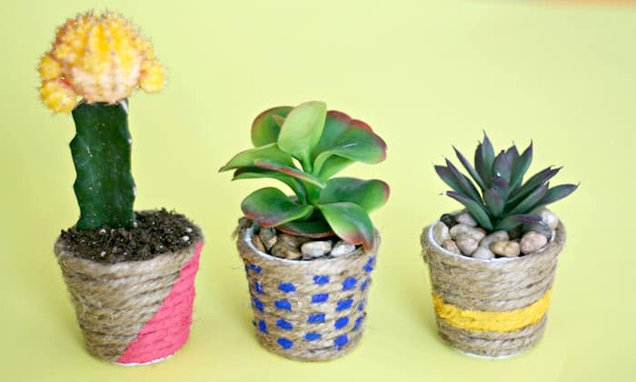 Make these easy rope DIY planters - the mini size makes them perfect for filling with cacti or succulents to decorate your house or give to friends!