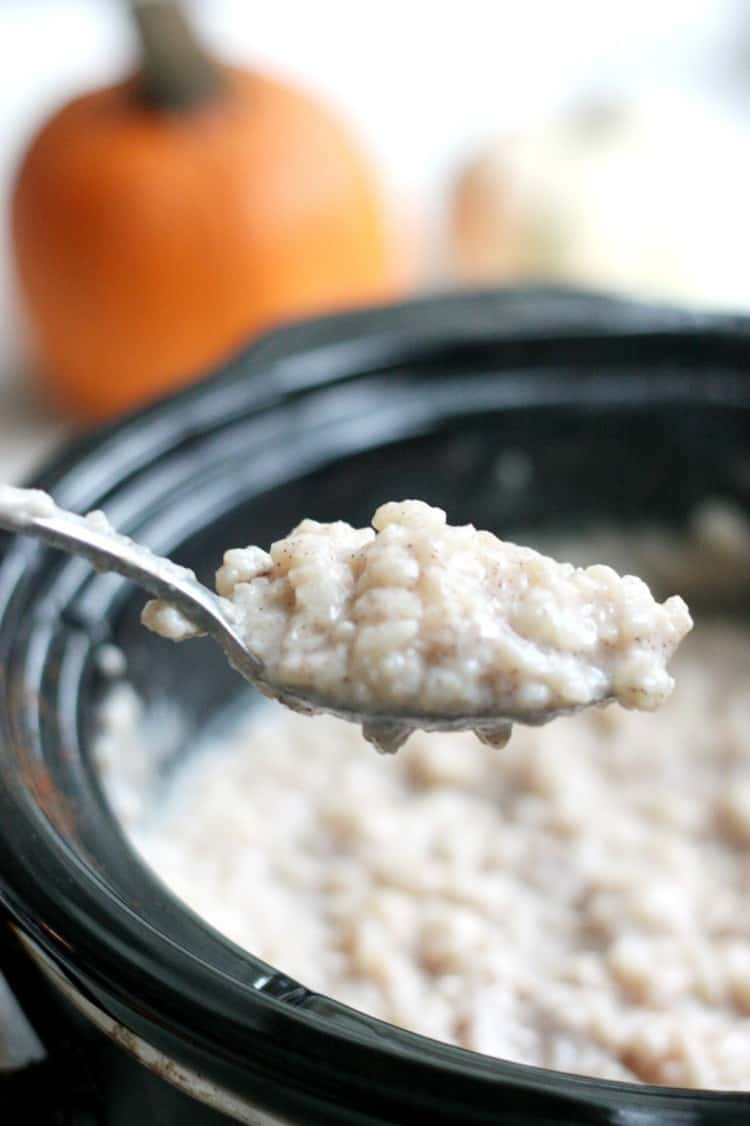If you are looking for the perfect slow cooker rice pudding, I assure you: this is IT. It is warm and creamy, with pumpkin pie spice for extra flavor!