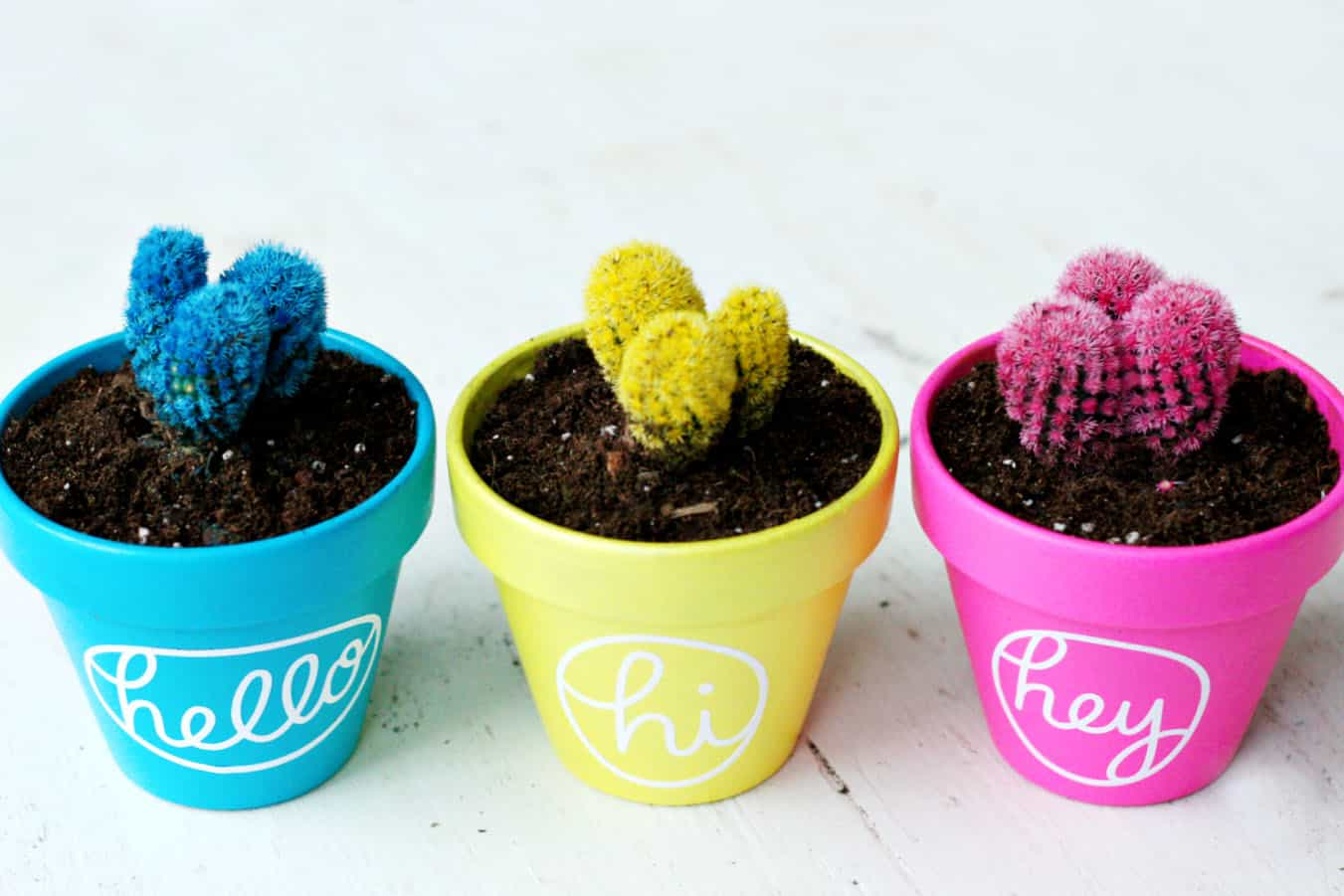 Colorful Hello Cactus Painted Pots Diy Candy