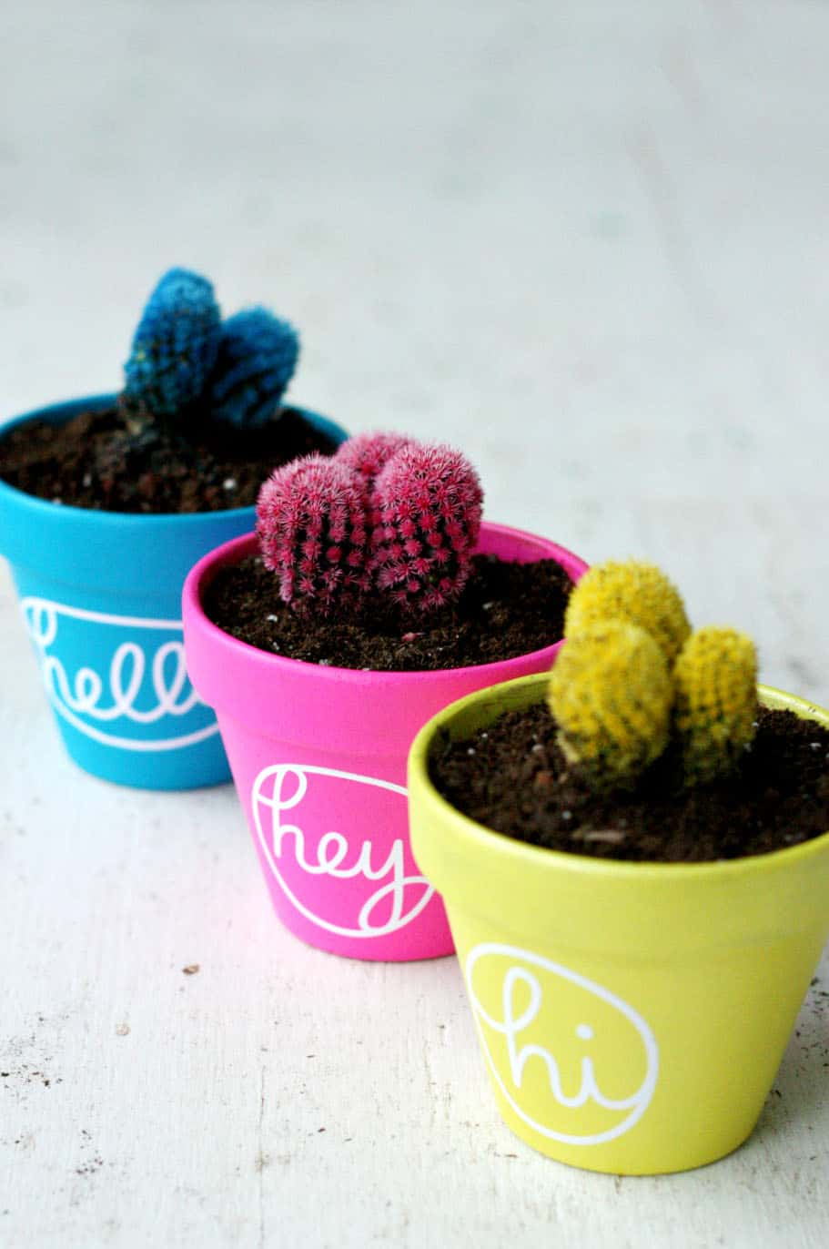 Make these easy painted pots using terra cotta planters and your favorite paint colors - the cute sayings will brighten up any dreary days!