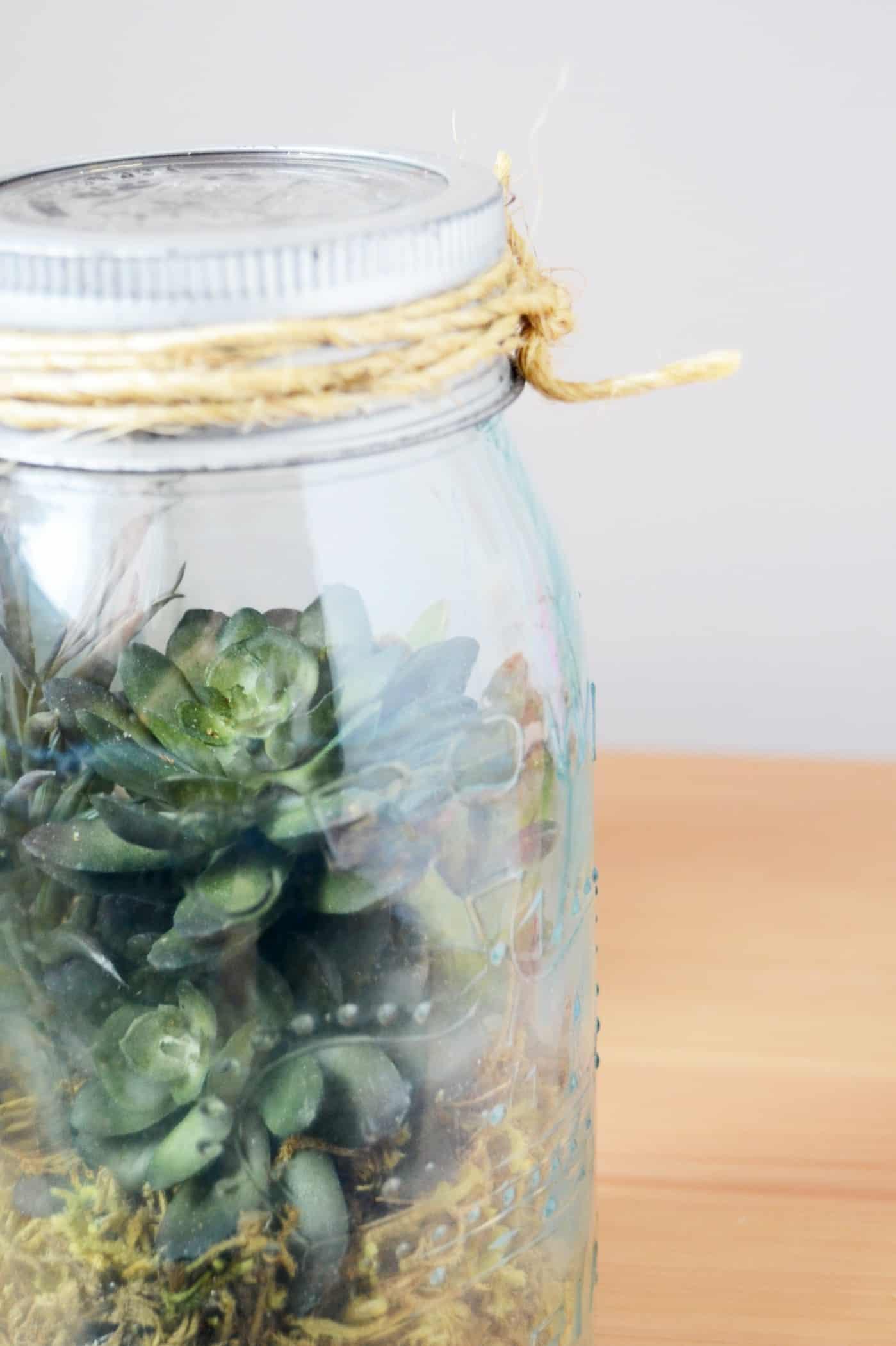 how to make a terrarium in a jar