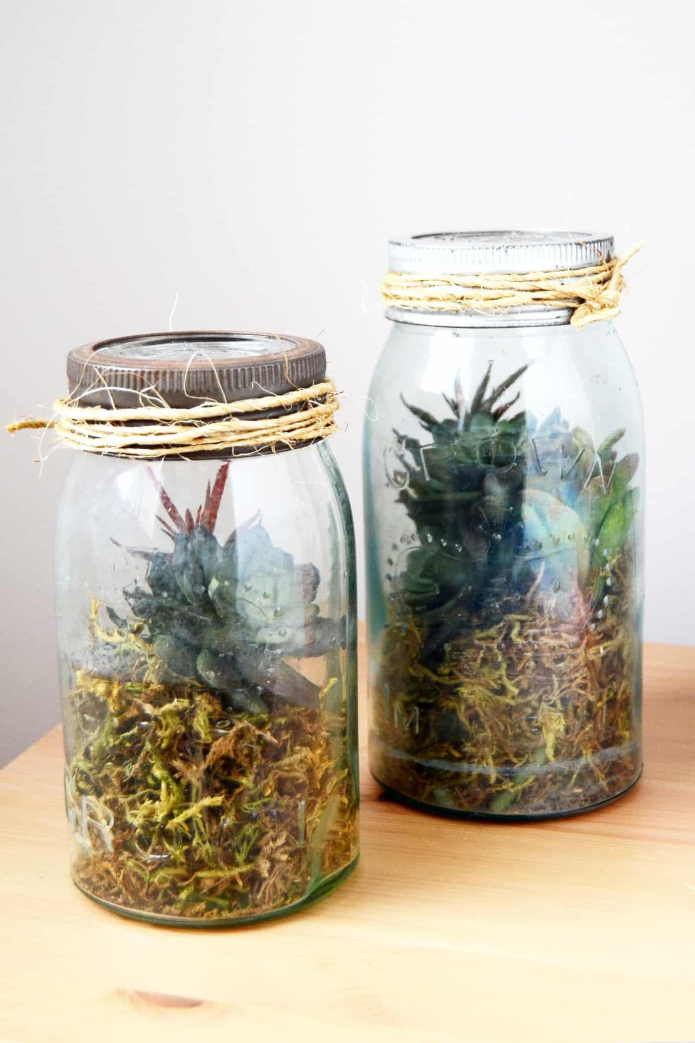 How to make a fake terrarium in a jar