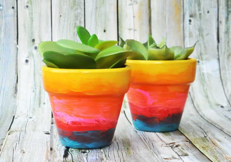 Use a variety of paint colors to turn flower pots into rainbow ombre awesomeness! Both children and adults alike will love this easy craft. So fun!