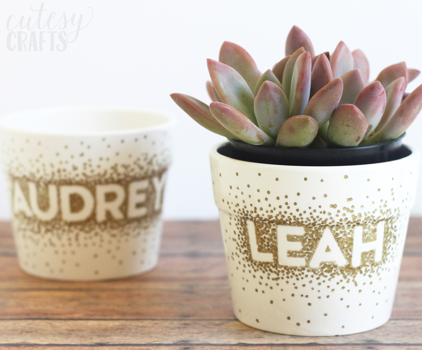 personalised sharpie flower pot