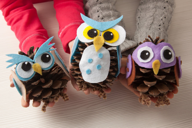 Cute owl pine cones for kids