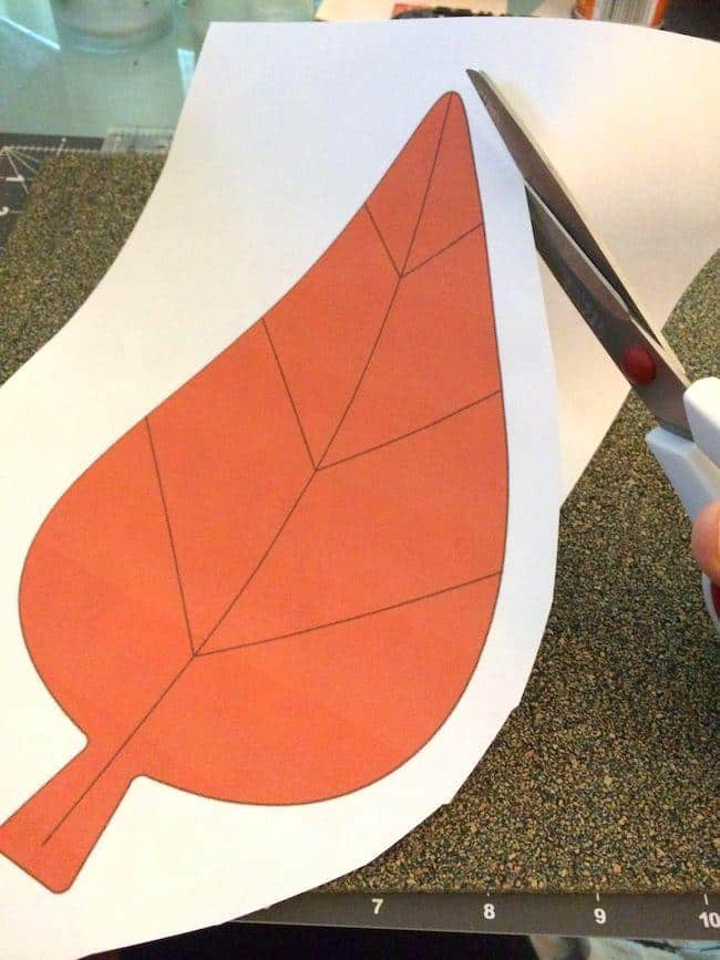 Cutting out an image of a leaf with scissors