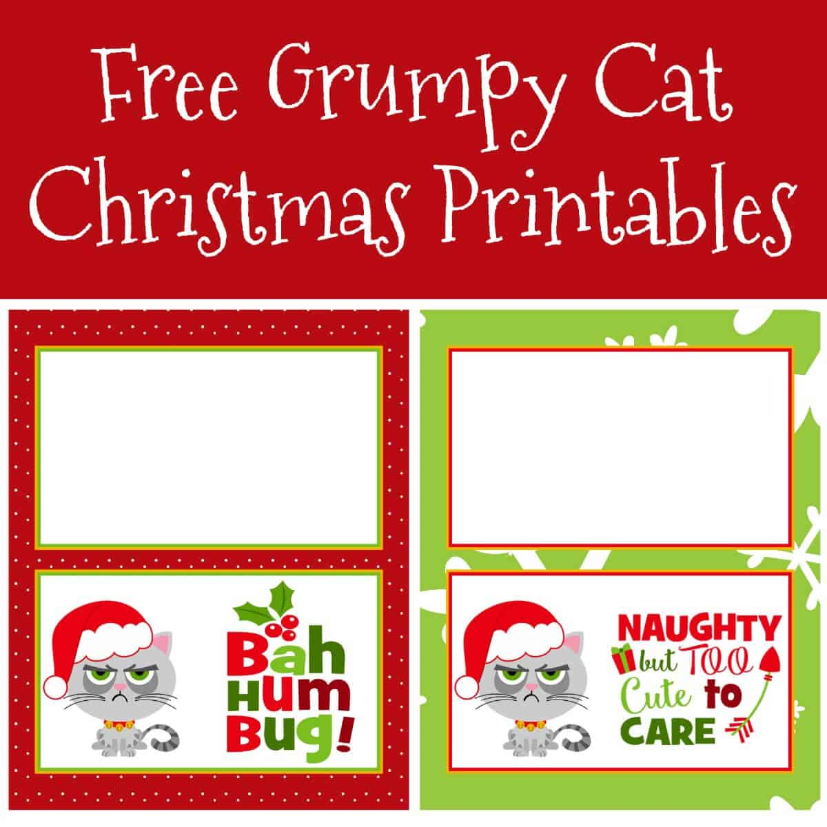 Have fun this holiday season with these free Grumpy Cat Christmas printables! Print on sticker paper for your gift giving and make people smile.