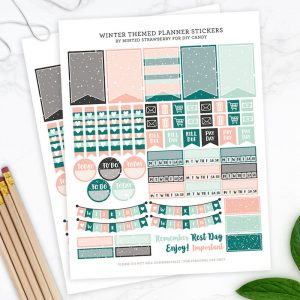 Free Printable Winter Themed Planner Stickers...
