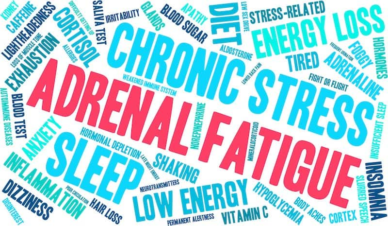 A story about my personal journey with adrenal fatigue. Learn how I figured it out and what I'm doing to treat it. You're not alone!