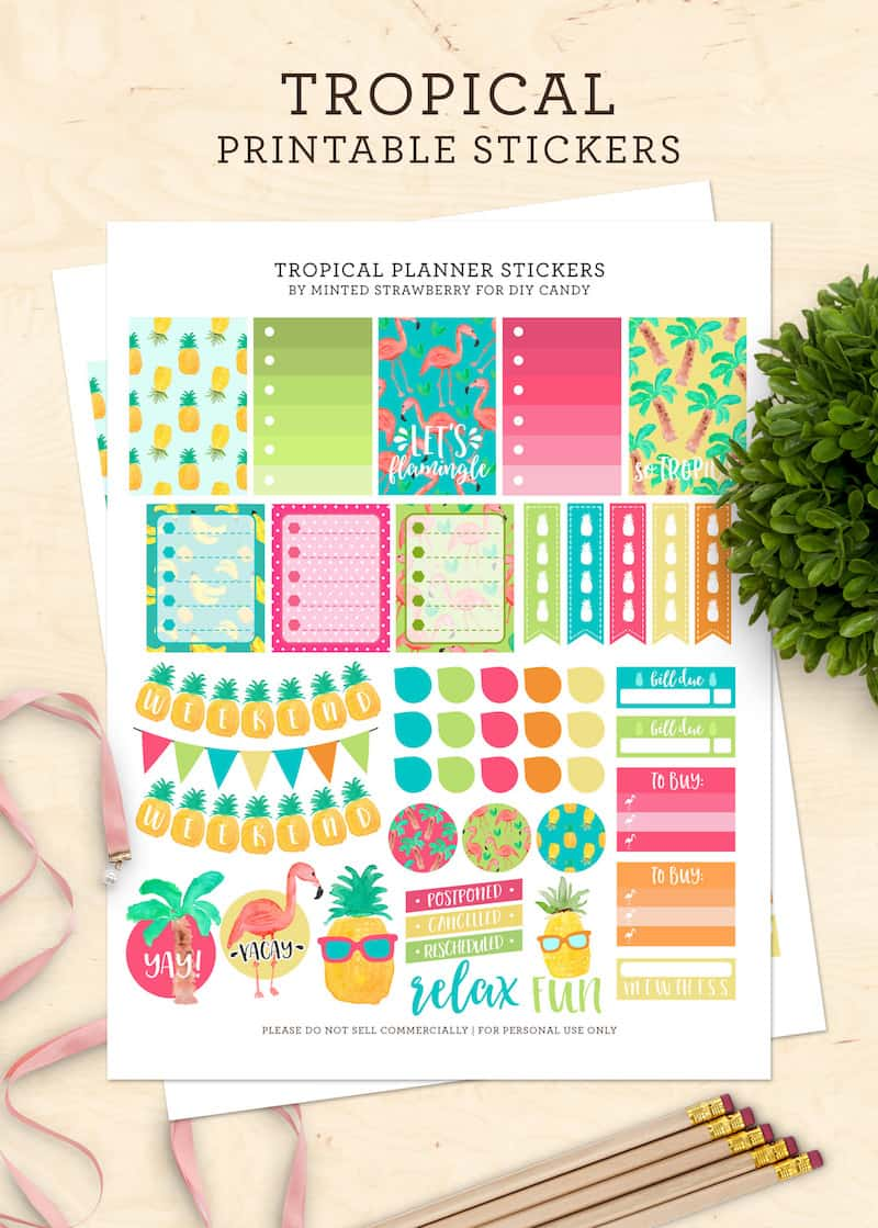 Grab some free printable planner stickers with a tropical summer theme! Perfect for Happy Planner, Day Designer, bullet journal, and more.