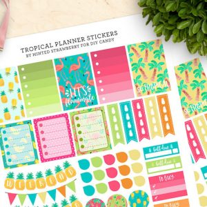 Colorful Tropical Printable Planner Stickers