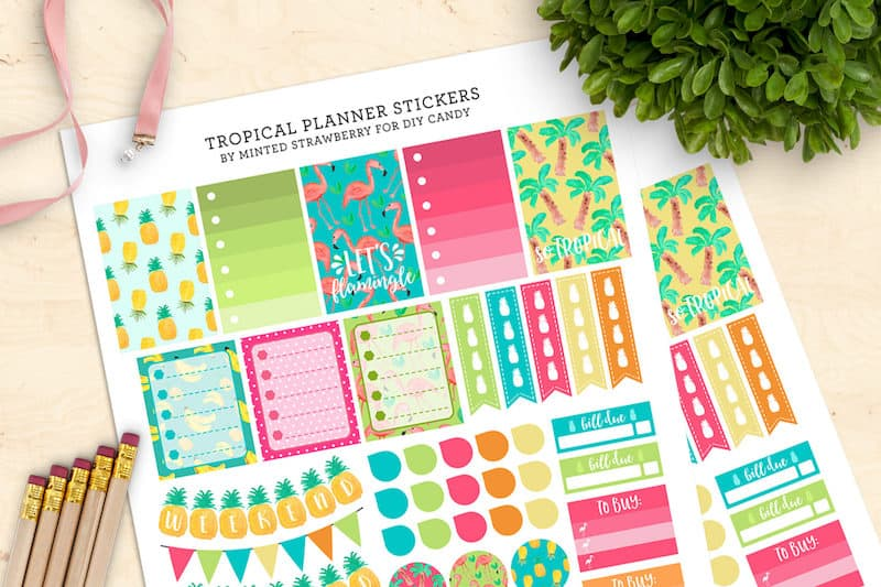 picture regarding Planner Printable Stickers called Colourful Tropical Printable Planner Stickers - Do-it-yourself Sweet