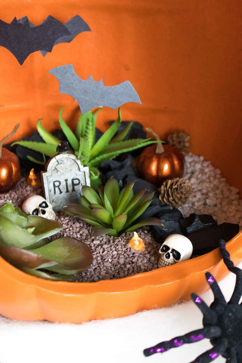 Use simple supplies to make a spooky pumpkin terrarium - love this pumpkin from Michaels. . . the front is already cut out!