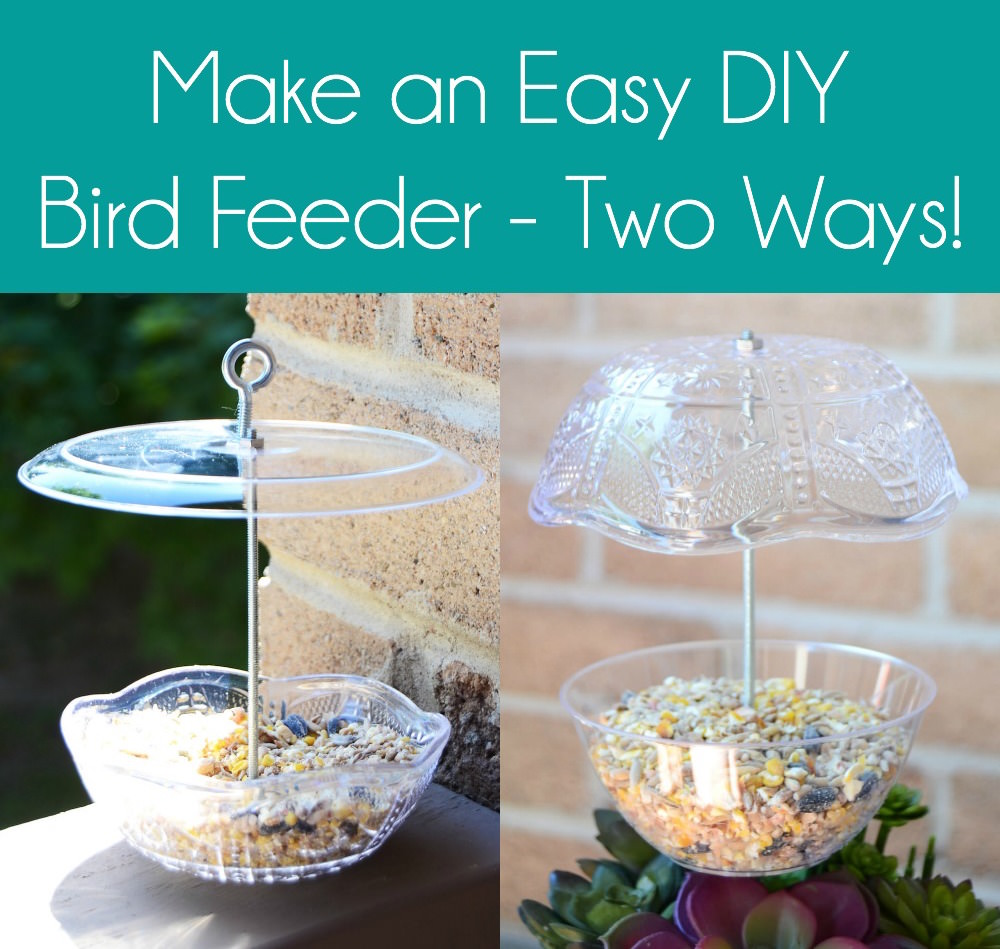 DIY bird feeder two ways