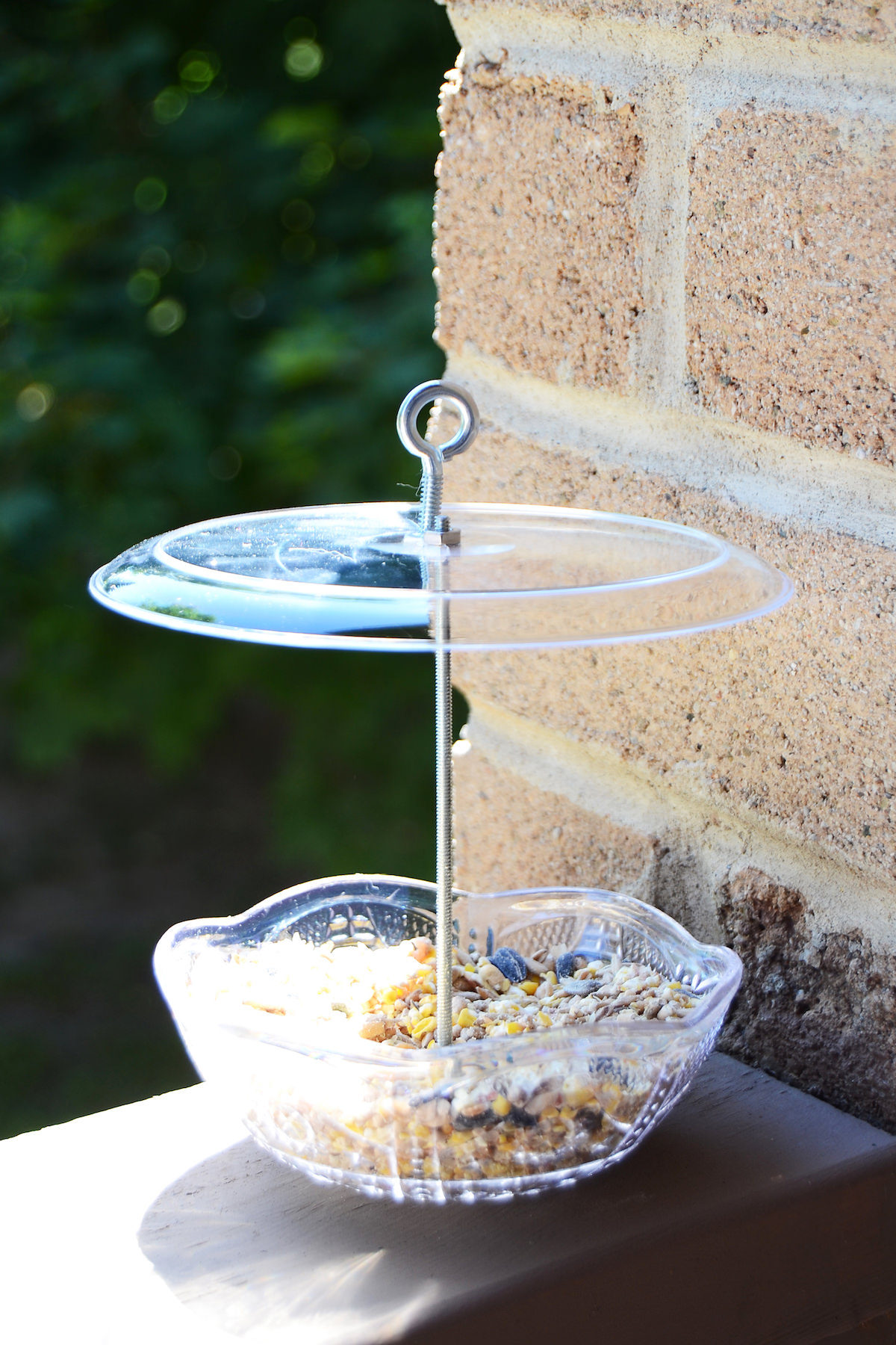 DIY hanging bird feeder